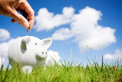piggy bank in grass
